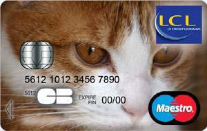Carte Bleue Visa Lcl.Les Clients De Lcl Peuvent Personnaliser Leur Carte Bancaire