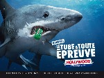 Hollywood met le chewing-gum en tube