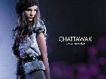 Chattawak habille les murs de Paris