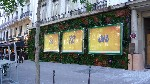 Orangina transforme la ville en jungle