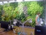 Utopies met du vert dans ses nouveaux locaux