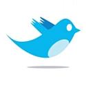 5,2 millions de Français sur Twitter