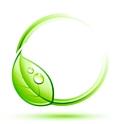 Produits de beauté bio: une croissance durable?
