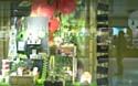 La nouvelle génération de magasins Nature & Découvertes, baptisée La Carapace, a été récompensée.