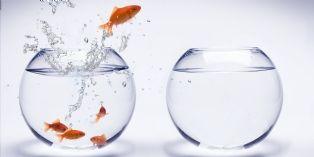 Le courage est une qualité essentielle pour réussir !