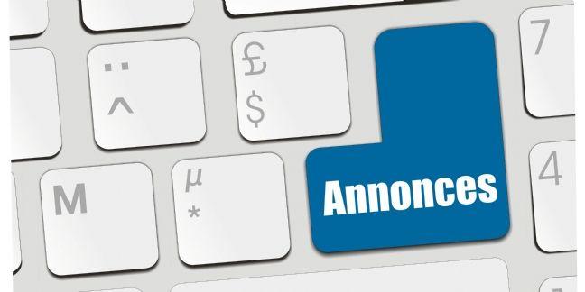 Petites annonces et ventes en ligne : les Français tous commerçants ?