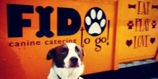 Des food-trucks qui ont du chien