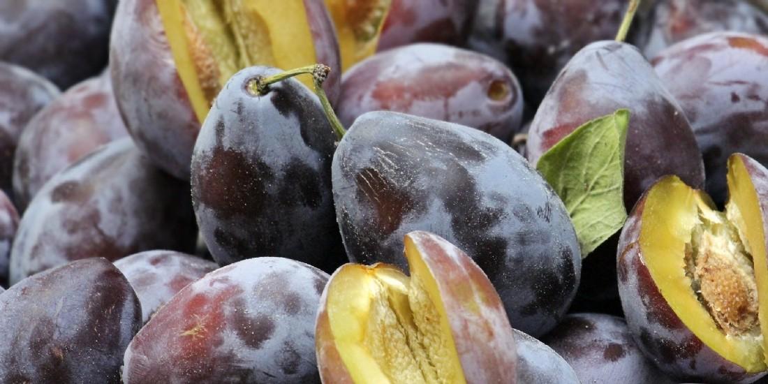 Et si le ver était dans le fruit ?