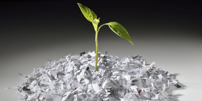 Le papier ne doit plus être le bouc-émissaire du développement durable