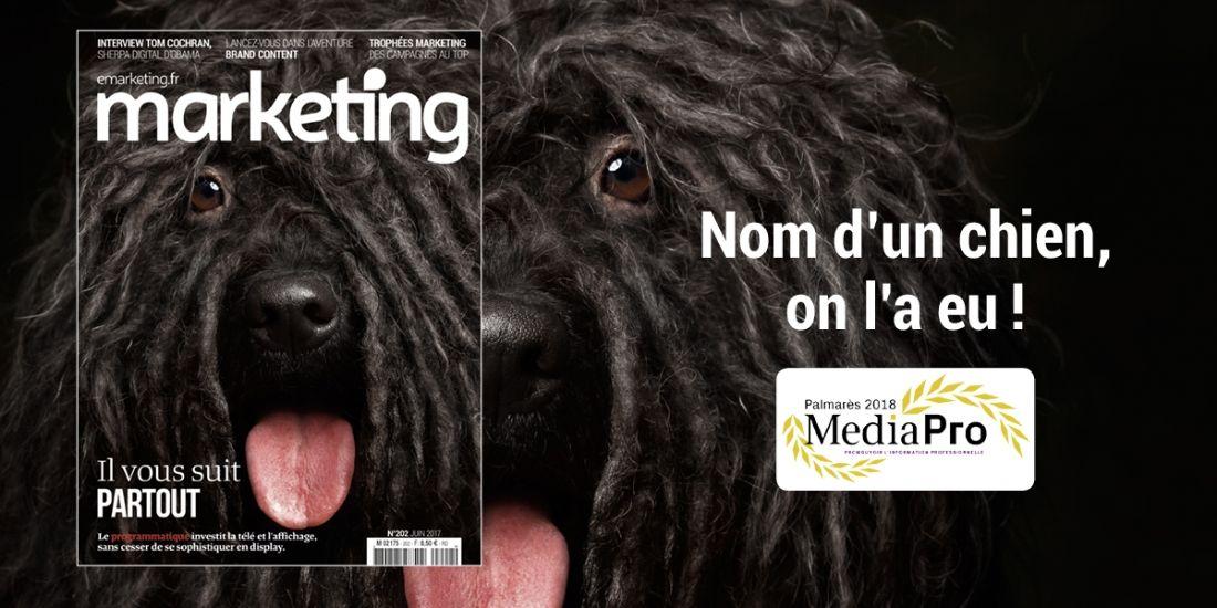 Doublé gagnant pour Marketing aux Grands Prix MediaPro